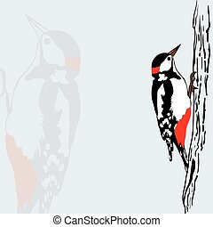 Woodpecker on tree, vector illustration