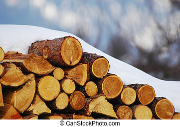 Woodpile - A snowed pile of wood