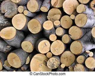woodpile - a stack of firewood