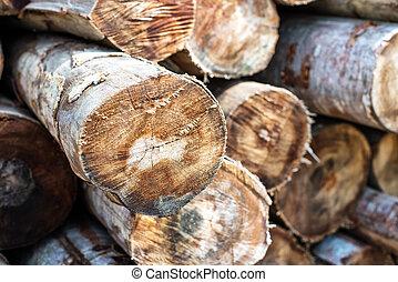 Woodpile closeup