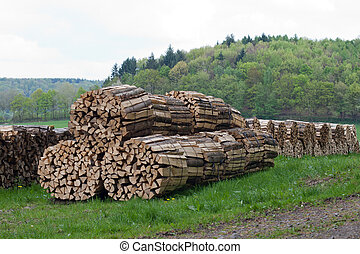 Woodpile - Stacked and bundled woodpile on a meadow