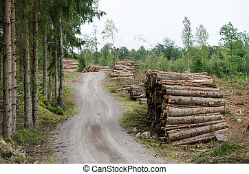 Woodpiles by a gravel road side