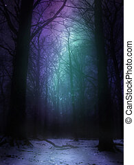 Woods Aurora Background