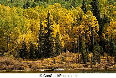 Woods Lake Near Telluride, Colorado