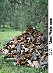 Woodshed formed from pieces of wood cut from the lumberjack