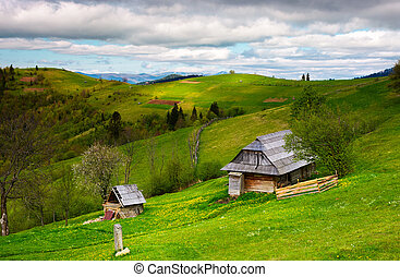 woodshed on a grassy hillside on a cloudy day. village...