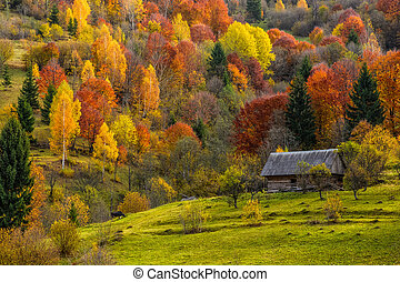 woodshed on the hillside in autumn mountains - woodshed...