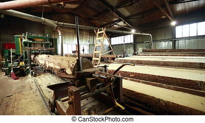 Woodshop. View of working machine and treated wood -...