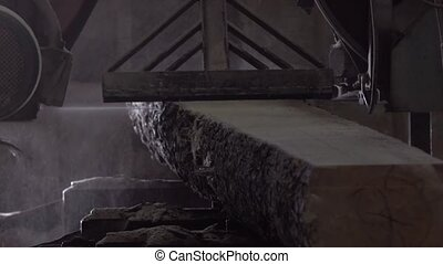 Woodworking conveyor in the factory - Woodworking conveyor...
