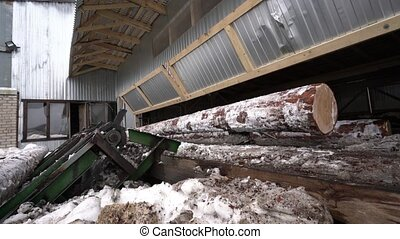 Woodworking factory and old machine for sawing up