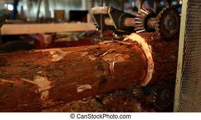 Woodworking. View of log moving by machine, close-up