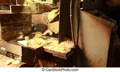 Woodworking. View of sawing log and sawdust flying, close-up
