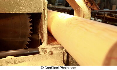 Woodworking. Worker puts log in machine - Woodworking. View...