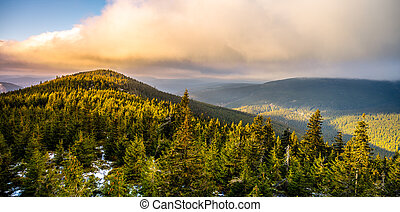 Woody landscape of Giant Mountains, Czech: Krkonose, Czech Republic. Plesivec Mountain in early winter time evening.