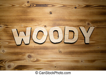 WOODY word made with building blocks on wooden board