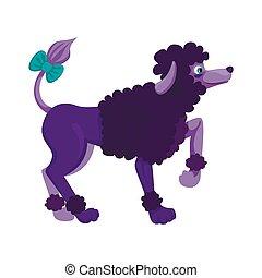 wool., arco, seu, escuro, cacheados, vetorial, cor poodle, levantado, paw., ficar, ilustração, tail., personagem, menino