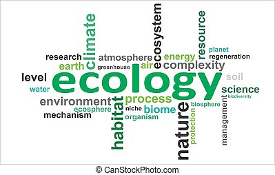 woord, ecologie, -, wolk
