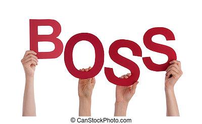 woord, mensen, velen, baas, holdingshanden, rood