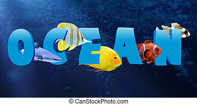 woord, oceaan, met, velen, tropische vis