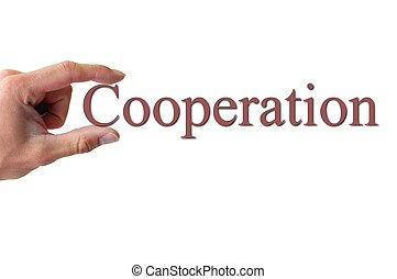 woord, vasthouden, samenwerking, hand