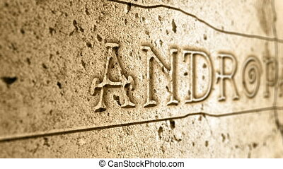 word andropause on wall with egyptian alphabet