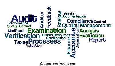 Word Cloud - Audit