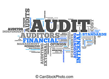 "Word Cloud ""Audit"""