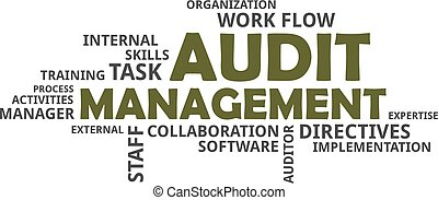 word cloud - audit management