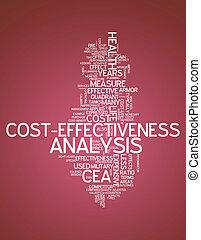 Word Cloud Cost-Effectiveness Analysis