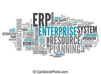 Word Cloud Enterprise Resource Planning