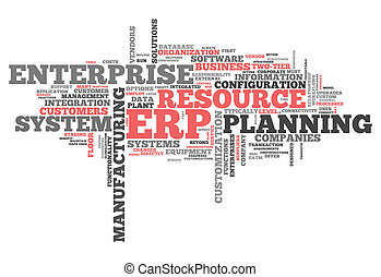 Word Cloud Enterprise Resource Planning