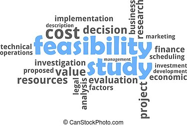 A word cloud of feasibility study related items