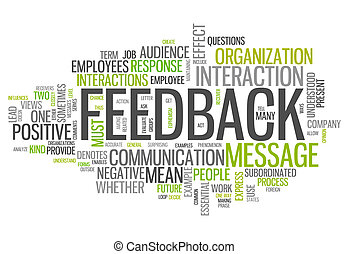 Word Cloud Feedback - Word Cloud with Feedback wording