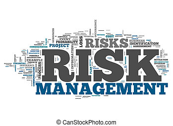 Word Cloud Risk Management