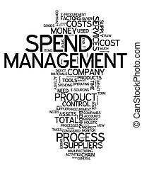 Word Cloud Spend Management