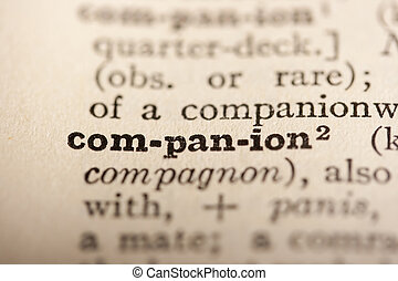 Word companion from the old dictionary, a close up.