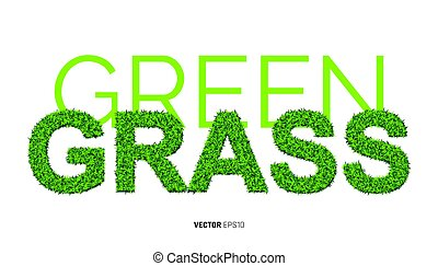 Green Grass Textute