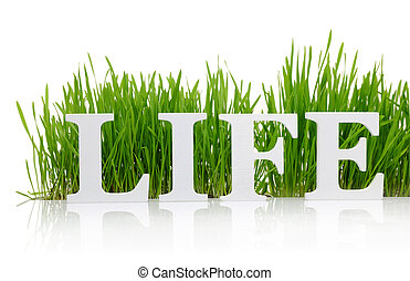 """Word """"Life"""" with fresh grass isolated on white"""