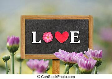 Word LOVE written on wood board