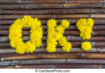 """word """"ok"""" of yellow dandelionsokay"""