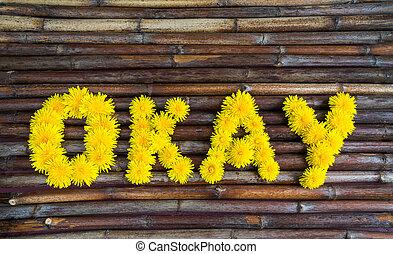 """word """"okay"""" of yellow dandelions"""