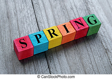 word spring on colorful wooden cubes