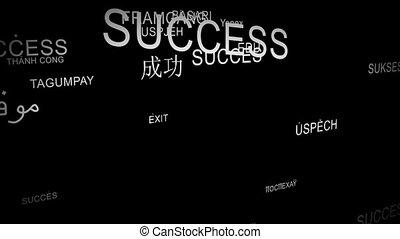 Word SUCCESS spelt in different languages