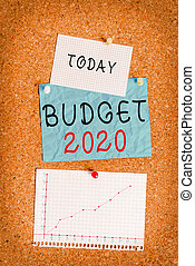 Word writing text Budget 2020. Business concept for estimate of income and expenditure for next or current year Corkboard color size paper pin thumbtack tack sheet billboard notice board.