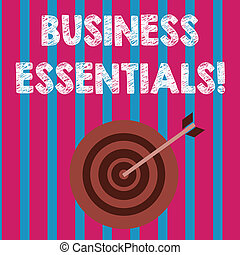 Word writing text Business Essentials. Business concept for important key ideas to improve business skills Color Dart Board in Concentric Style with Arrow Hitting the Center Bulls Eye.