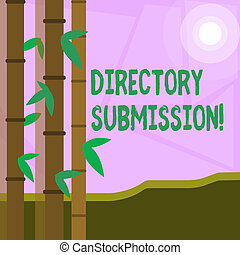 Word writing text Directory Submission. Business concept for main source to increase backlinks for your website Colorful Sets of Leafy Bamboo on Left Side and Moon or Sun with Round Beam.