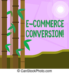 Word writing text E Commerce Conversion. Business concept for the way to measure success of your online store Colorful Sets of Leafy Bamboo on Left Side and Moon or Sun with Round Beam.