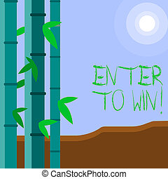 Word writing text Enter To Win. Business concept for exchanging something value for prize chance winning prize Colorful Sets of Leafy Bamboo on Left Side and Moon or Sun with Round Beam.