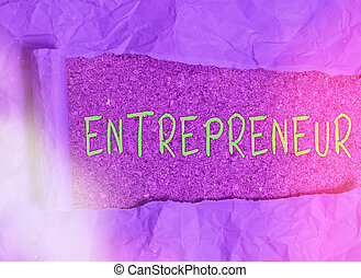 Word writing text Entrepreneur. Business concept for one who...