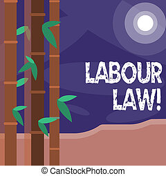 Word writing text Labour Law. Business concept for rules relating to rights and responsibilities of workers Colorful Sets of Leafy Bamboo on Left Side and Moon or Sun with Round Beam.